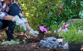 Что не забыть сделать в мае садоводу?