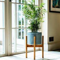 Устойчивость, способность удержать растение даже при нечаянном толчке, надежные ножки — единственно правильный вариант подставки для крупных растений