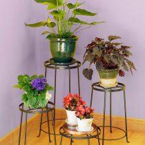 Средние одиночные растения лучше поставить на некрупных, удобных, единичных подставках