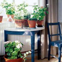 Круглые столики и их более оригинальные альтернативы очень удобны для видовых или тематических композиций из 2-5 растений