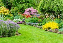 Цветник – гордость сада