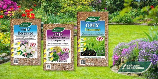 Чем подкормить газон и декоративные культуры в мае