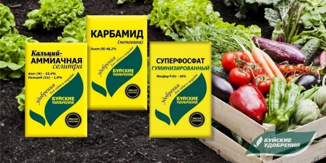 Чем подкормить сад и огород в мае