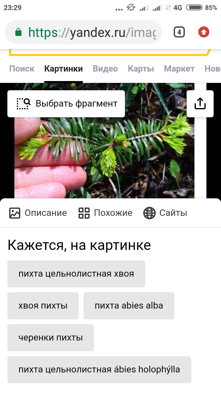Screenshot_2020-05-17-23-29-43-736_com.android.chrome
