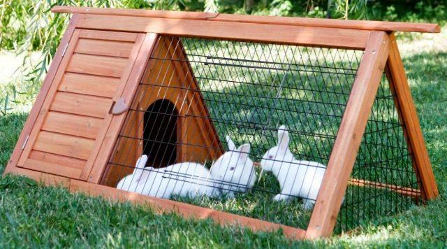 Для кроликов можно сделать специальные переносные домики-выгулы