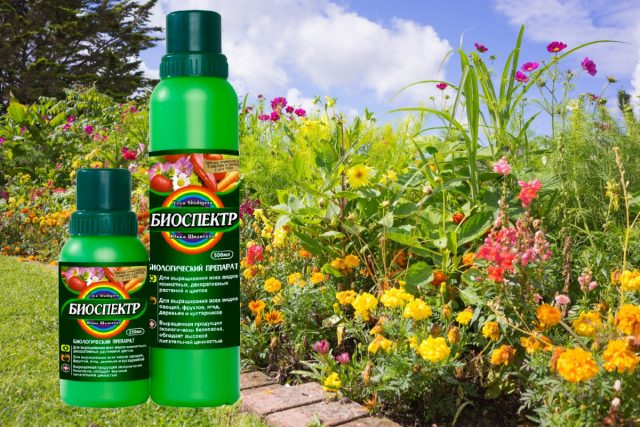 """Абсолютно безопасный, эффективный для всех видов растений, биопрепарат """"Биоспектр"""""""