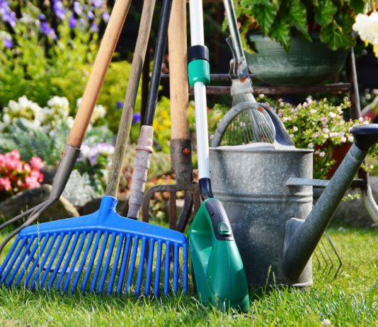 Лунный календарь садовода и огородника на июль 2020