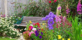 7 способов быстро поправить цветник в разгар лета