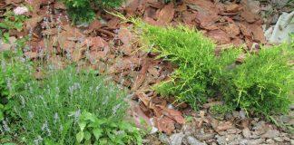 Старая и свежая кора, камень и геотекстиль для мульчирования
