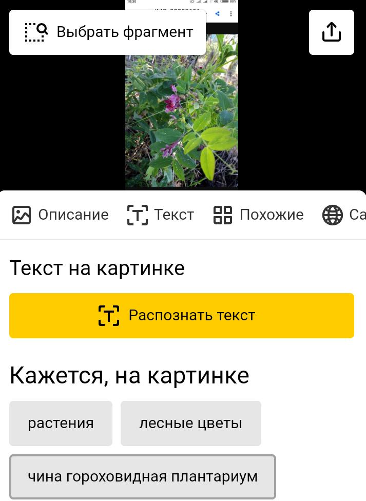 Screenshot_2020-07-10-10-31-55-561_com.android.chrome