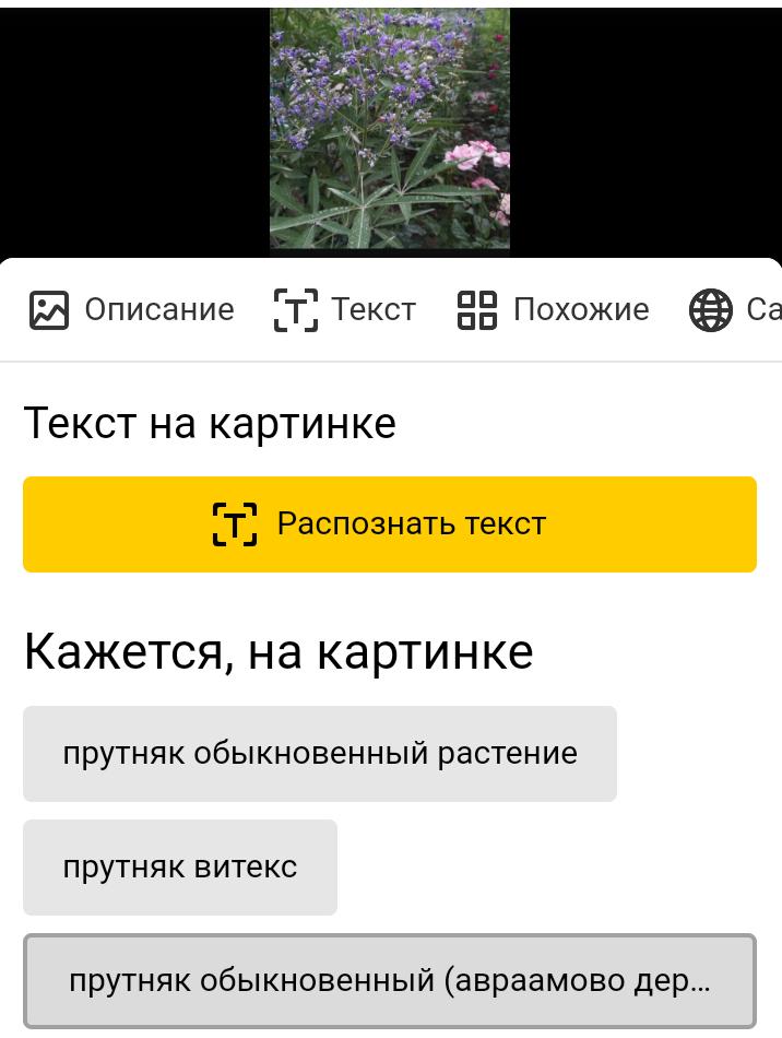 Screenshot_2020-07-10-19-37-18-347_com.android.chrome