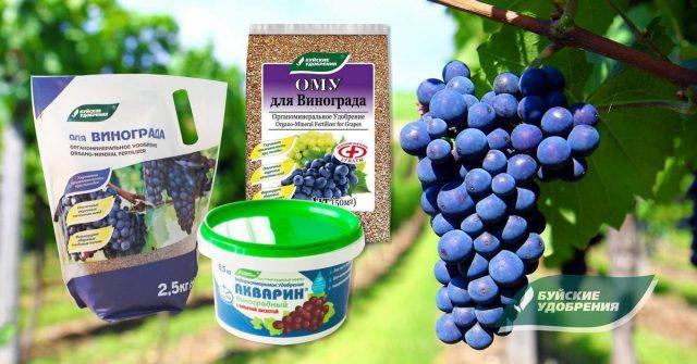 Удобрения завода Буйские удобрения: Органоминеральное удобрение, ОМУ для винограда и Акварин Виноградный