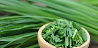 Многолетние луки на зелень, которые я рекомендую выращивать всем