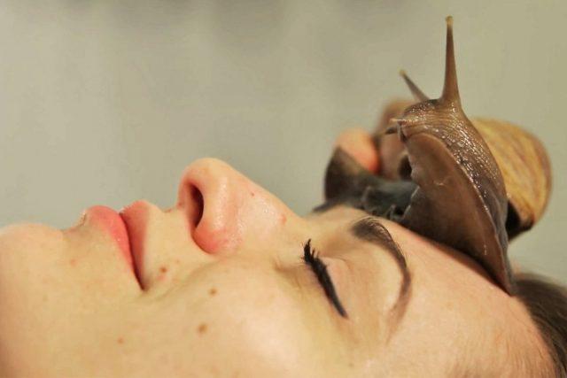 Слизь улитки прекрасно действует на кожу — увлажняет, питает и буквально на глазах омолаживает