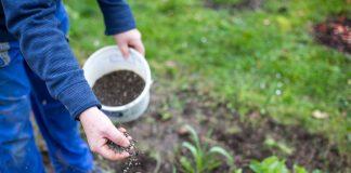 Как поддержать здоровье почвы – секреты биоорганики
