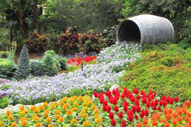 Цветочные ручьи часто привязывают к природным возвышенностям