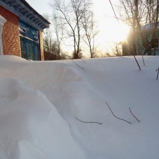 Есть регионы, где зимой из-за снега до грядки не докопаешься