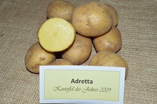 Картофель «Адретта» (Adretta)