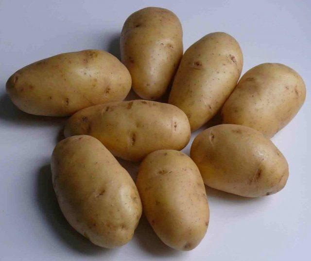 Картофель «Невский»