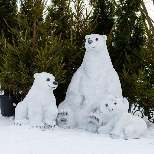 К вам в гости забрела семья снежных медведей
