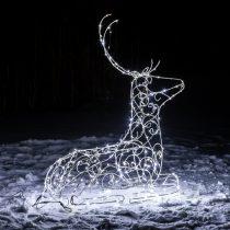 Северный олень из света добавляет немного сказки