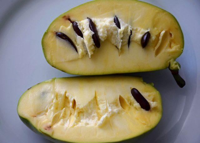 Плод азимины в разрезе