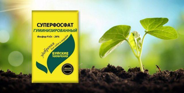 Суперфосфат гуминизированный - комплексное минеральное удобрение