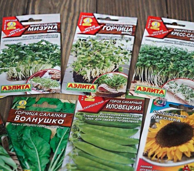 Выбор семян микрозелени довольно широк