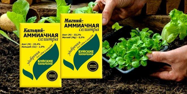Минеральные удобрения - кальций-аммиачная и магний-аммиачная селитры