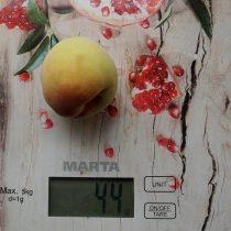 Плоды персика «Воронежский кустовой» небольшие