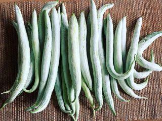 Плоды трихозанта богаты на витамины и полезные вещества