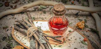 Лекарства зимнего сада — о пользе чая из побегов плодовых