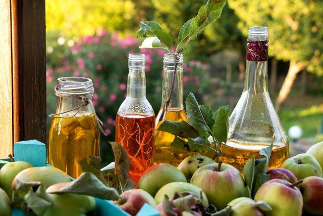 Целебные яблони и яблоки — о пользе почек, листиков, цветков и плодов