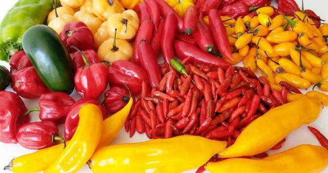 Разнообразные сорта перца
