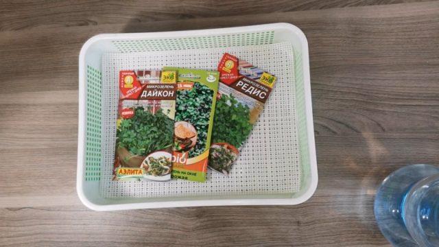 Как выбирать семена на микрозелень?