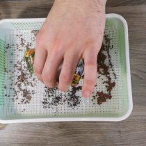Затем накрываем сеткой с мелкими ячейками и высыпаем семена