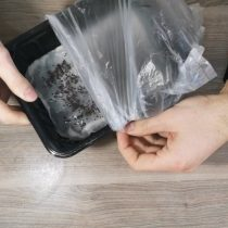 Укрываем полиэтиленовым пакетом