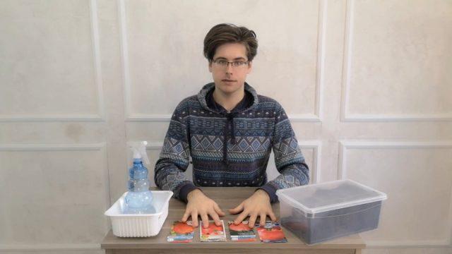 Низкорослые томаты — чем хороши и как их посадить на рассаду