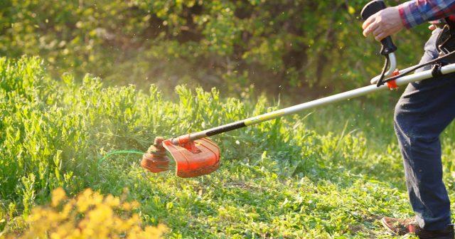 Скашивание высокой травы для профилактики от клеща
