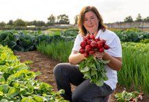 Длина дня — влияние на развитие овощей