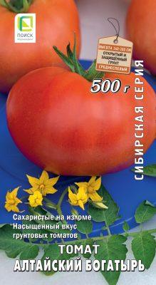 Сахаристый томат сорта «Алтайский богатырь»