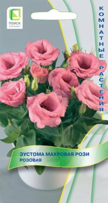 Эустома махровая «Рози Розовая»