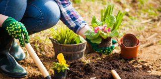 Лунный календарь садовода и огородника на май 2021