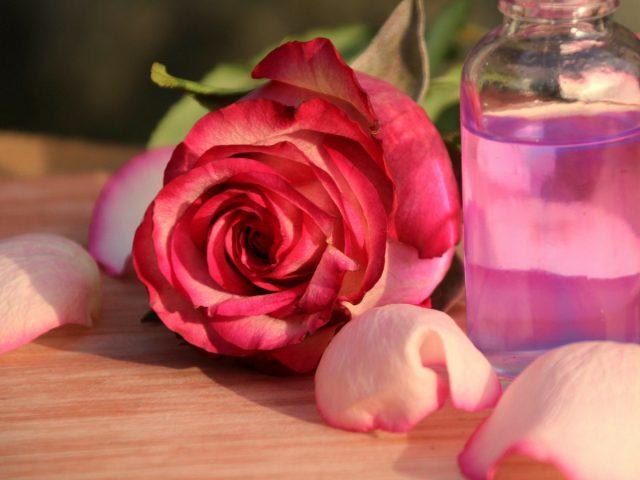 Как только начнут отцветать розы, можно из лепестков сделать ароматную воду