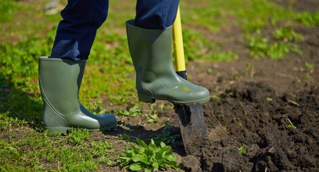 Выкапывание канавок способствует контролю уровня влажности земли