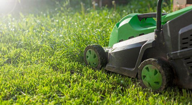 Красивый газон –всегда ухоженный и подстриженный