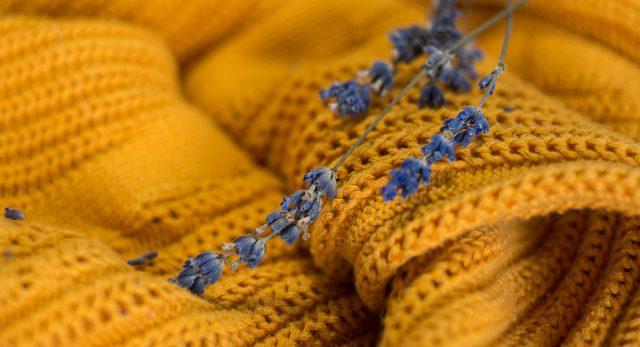Веточка лаванды на полке с одеждой защитит от моли и подарит приятный аромат