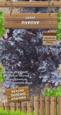 Сорт салата «Пурпур»