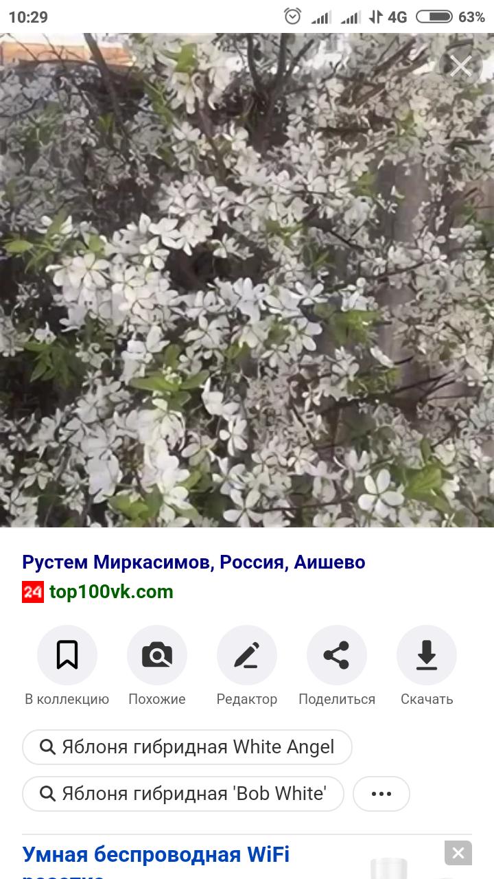 Screenshot_2021-05-24-10-29-05-655_com.android.chrome