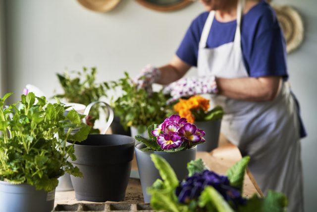 Для обработки комнатных растений нужен отдельный рабочий уголок на открытом воздухе или балконе